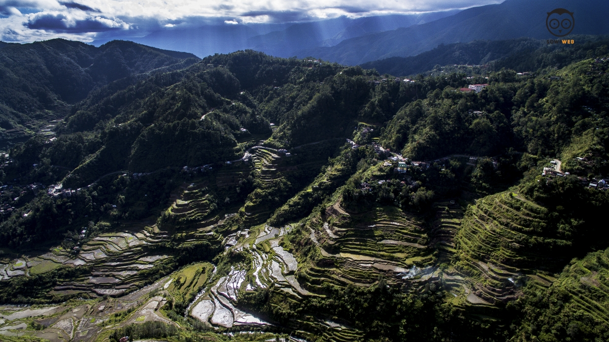 Banaue Rice Terraces by Sowiweb